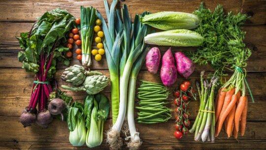 Вегетарианство. Виды и их основные отличия